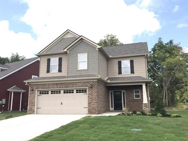 1256 Cotillion Drive (Lot 461), Murfreesboro, TN 37128 (MLS #RTC2044992) :: Ashley Claire Real Estate - Benchmark Realty