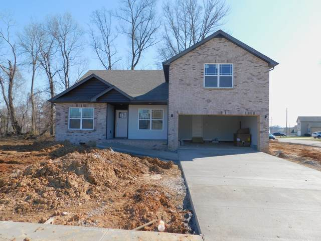 1201 Elizabeth Lane, Clarksville, TN 37042 (MLS #RTC2101910) :: Five Doors Network