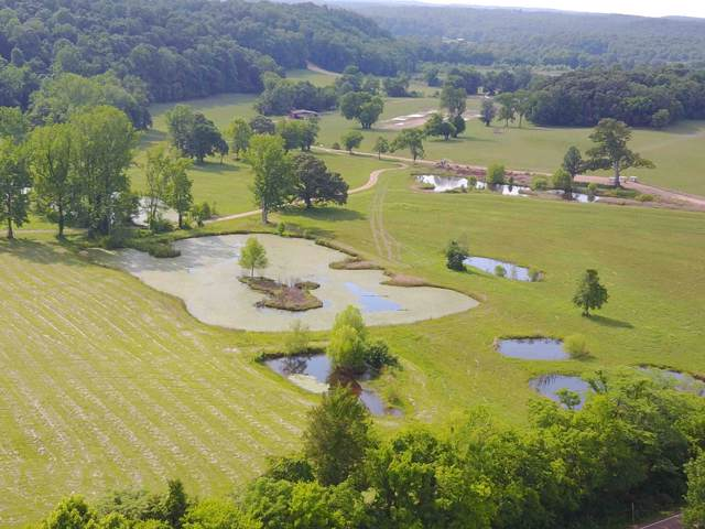 3301 Natural Bridge Rd, Waynesboro, TN 38485 (MLS #RTC2104791) :: Village Real Estate