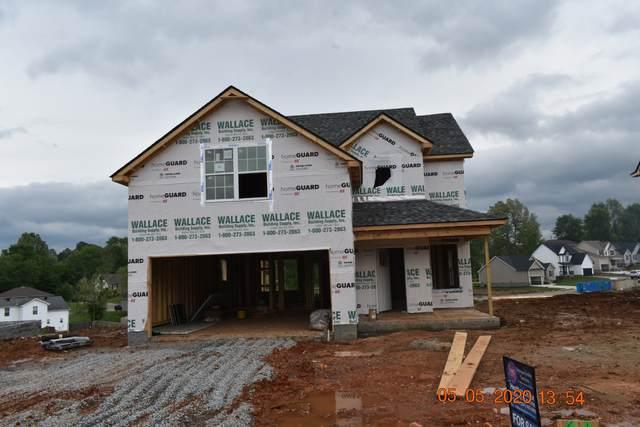 61 Chestnut Hill, Clarksville, TN 37042 (MLS #RTC2129813) :: Village Real Estate
