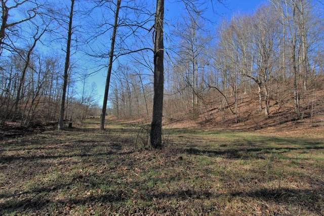 0 Dog Creek Rd, Primm Springs, TN 38476 (MLS #RTC2132142) :: RE/MAX Homes And Estates