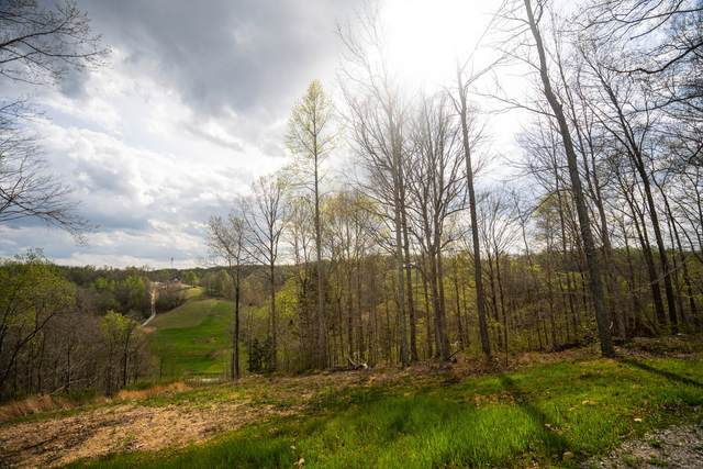 4468 Old Leipers Creek Rd, Columbia, TN 38401 (MLS #RTC2132771) :: Nashville on the Move