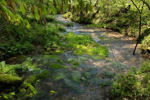 7262 Sinking Creek Rd, Linden, TN 37096 (MLS #RTC2136889) :: HALO Realty