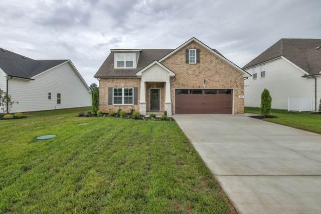 428 Beulah Rose Dr, Murfreesboro, TN 37128 (MLS #RTC2146854) :: Team Wilson Real Estate Partners