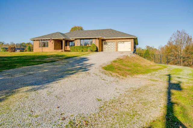 1771 Wynnewood Dr, Chapmansboro, TN 37035 (MLS #RTC2147371) :: The Milam Group at Fridrich & Clark Realty