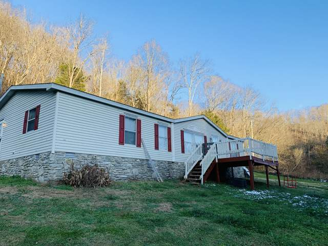 162 Dog Branch Rd S, Pleasant Shade, TN 37145 (MLS #RTC2210683) :: Fridrich & Clark Realty, LLC