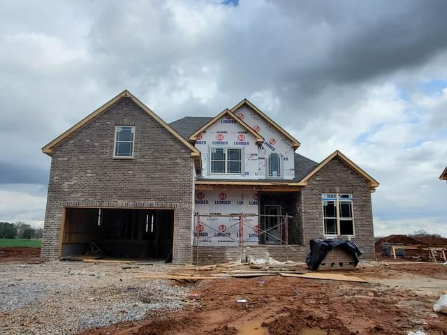 205 Wellington Fields, Clarksville, TN 37043 (MLS #RTC2216248) :: Nashville on the Move
