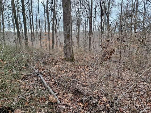 0 Sioux Trail-Tract 519, Pegram, TN 37143 (MLS #RTC2226563) :: The Kelton Group
