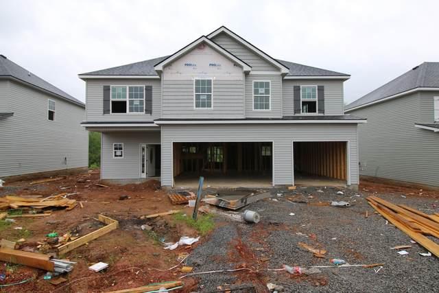 144 Chalet Hills, Clarksville, TN 37040 (MLS #RTC2229453) :: Platinum Realty Partners, LLC