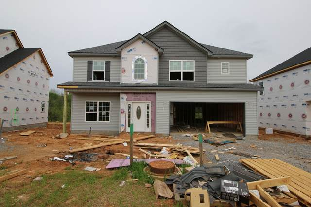 143 Chalet Hills, Clarksville, TN 37040 (MLS #RTC2229559) :: Nelle Anderson & Associates