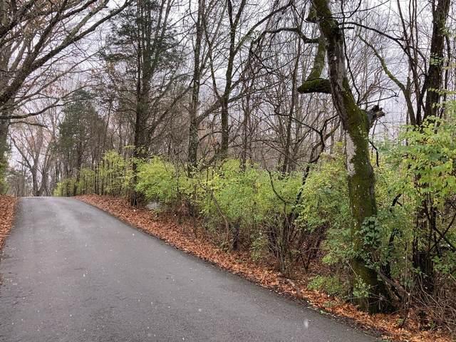 717 Riverview Rd, Mount Juliet, TN 37122 (MLS #RTC2233022) :: Felts Partners
