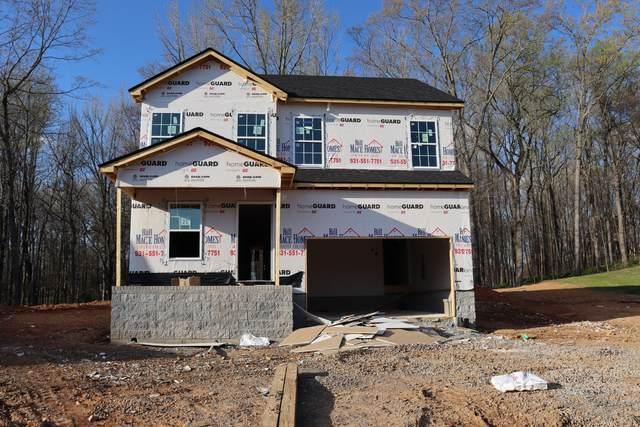21 Woodland Hills, Clarksville, TN 37040 (MLS #RTC2235140) :: Christian Black Team