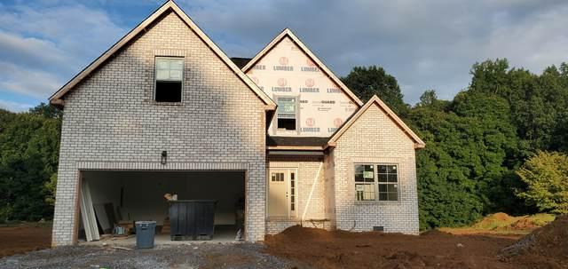 297 Poplar Hill, Clarksville, TN 37043 (MLS #RTC2238151) :: The Kelton Group