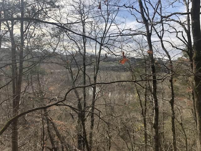 317 Highway 100, Centerville, TN 37033 (MLS #RTC2241847) :: John Jones Real Estate LLC