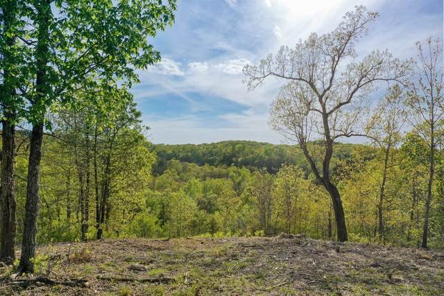 0 Richland Harbor Rd, Waverly, TN 37185 (MLS #RTC2242972) :: Village Real Estate