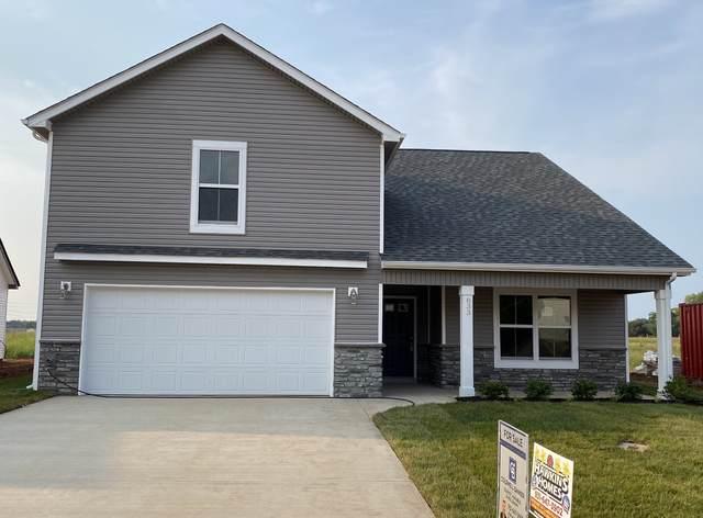 215 Mills Ctreek, Clarksville, TN 37042 (MLS #RTC2262842) :: The Helton Real Estate Group