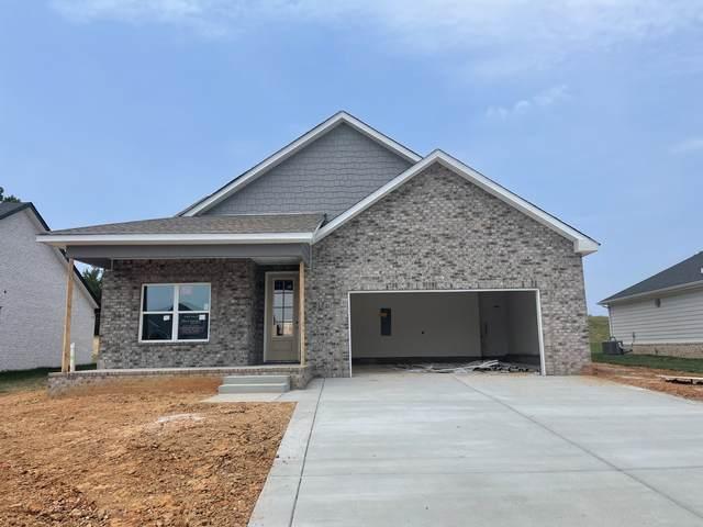 816 Jersey Dr, Clarksville, TN 37043 (MLS #RTC2270385) :: Candice M. Van Bibber | RE/MAX Fine Homes