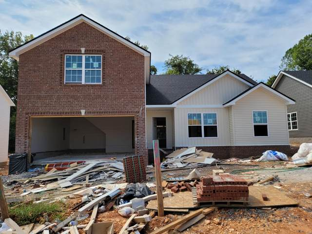 19 Irish Hills, Clarksville, TN 37042 (MLS #RTC2274739) :: Nashville Home Guru