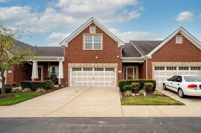 205 Whiteamore Run, Murfreesboro, TN 37128 (MLS #RTC2299924) :: Village Real Estate