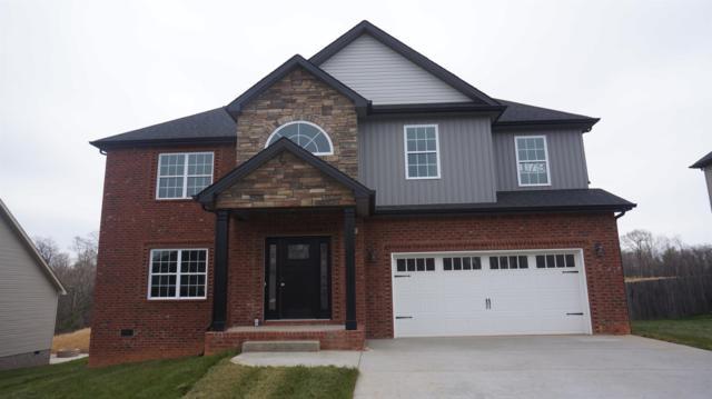 179 Timber Springs, Clarksville, TN 37042 (MLS #1910491) :: NashvilleOnTheMove | Benchmark Realty