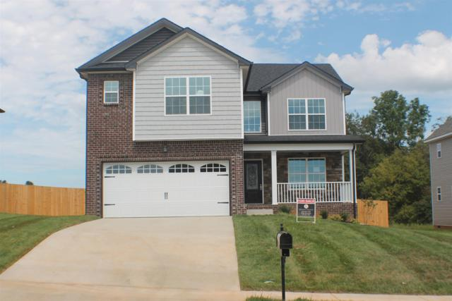 748 Crestone Lane, Clarksville, TN 37042 (MLS #1916633) :: Nashville On The Move | Keller Williams Green Hill