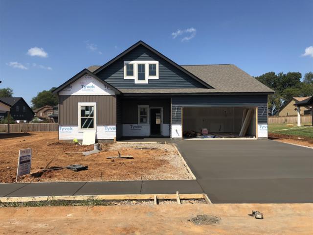 51 Beech Grove, Clarksville, TN 37043 (MLS #1924373) :: DeSelms Real Estate
