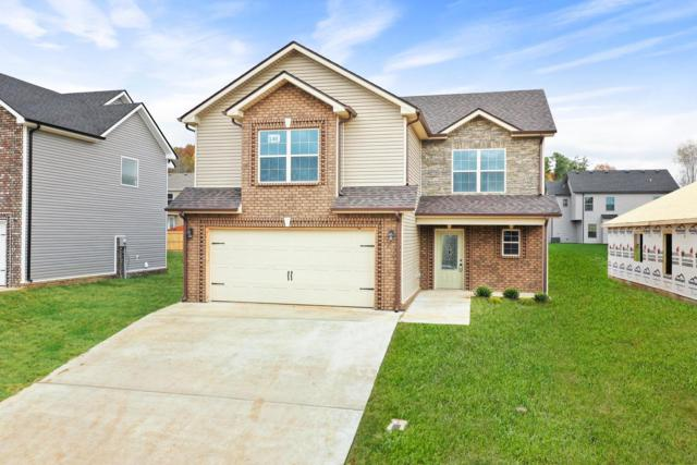 1136 Gentry Dr, Clarksville, TN 37040 (MLS #1930223) :: The Kelton Group