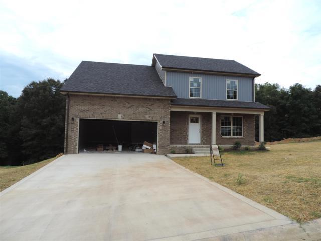 142 Robin Lynn Hills, Clarksville, TN 37042 (MLS #1930528) :: Nashville On The Move