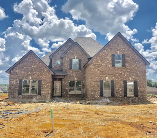 1107 Cascadeway Drive, Murfreesboro, TN 37129 (MLS #1937237) :: Nashville On The Move