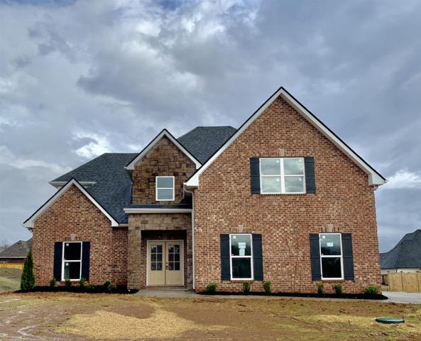 1014 Sycamore Leaf Way, Murfreesboro, TN 37129 (MLS #1937271) :: DeSelms Real Estate