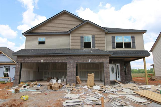 117 Summerfield, Clarksville, TN 37040 (MLS #1943921) :: Ashley Claire Real Estate - Benchmark Realty