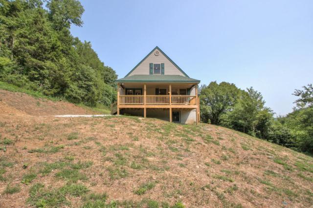 100 Cornwell Hollow Ln, Dixon Springs, TN 37057 (MLS #1961256) :: Nashville on the Move