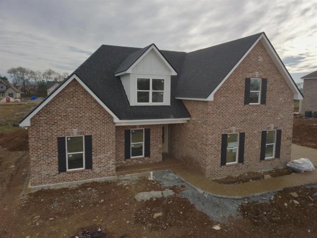 905 Paislee Raine Drive, Smyrna, TN 37167 (MLS #1982031) :: John Jones Real Estate LLC