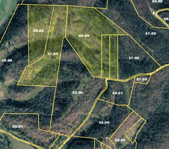 89 Hanna Branch Rd, Prospect, TN 38477 (MLS #2037610) :: The Helton Real Estate Group