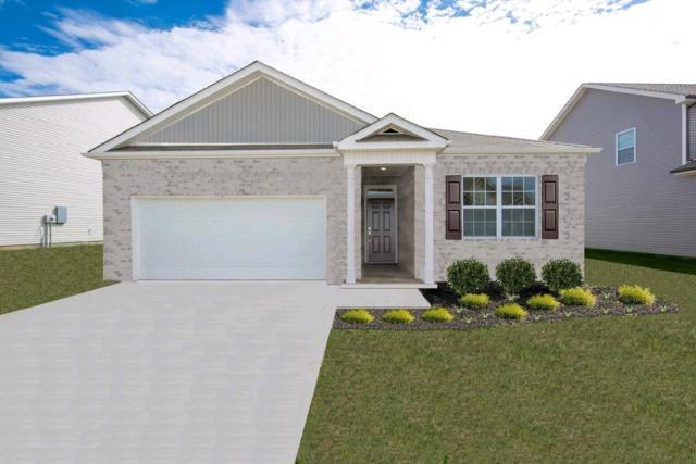 309 Tessa Grace Way #05, Murfreesboro, TN 37129 (MLS #RTC2040990) :: Village Real Estate