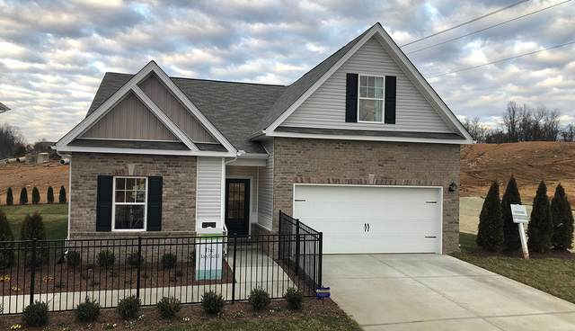 69 Briar Chapel Dr, Murfreesboro, TN 37128 (MLS #RTC2102555) :: Village Real Estate