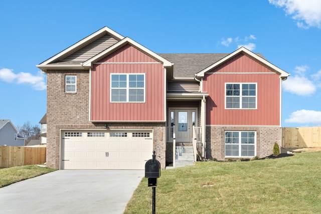 1195 Elizabeth Lane, Clarksville, TN 37042 (MLS #RTC2108562) :: Five Doors Network