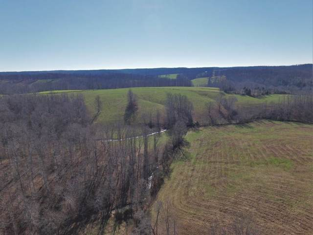 0 Dog Creek Rd, Primm Springs, TN 38476 (MLS #RTC2132142) :: Randi Wilson with Clarksville.com Realty