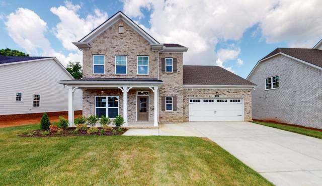 205 Beulah Rose Dr, Murfreesboro, TN 37128 (MLS #RTC2159545) :: Team Wilson Real Estate Partners