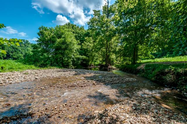 7379 Caney Fork Rd, Fairview, TN 37062 (MLS #RTC2171746) :: Hannah Price Team