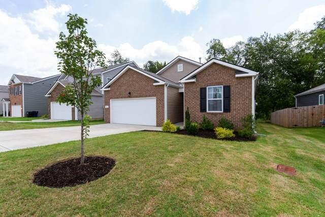 746 Prominence Rd, Columbia, TN 38401 (MLS #RTC2175240) :: Berkshire Hathaway HomeServices Woodmont Realty