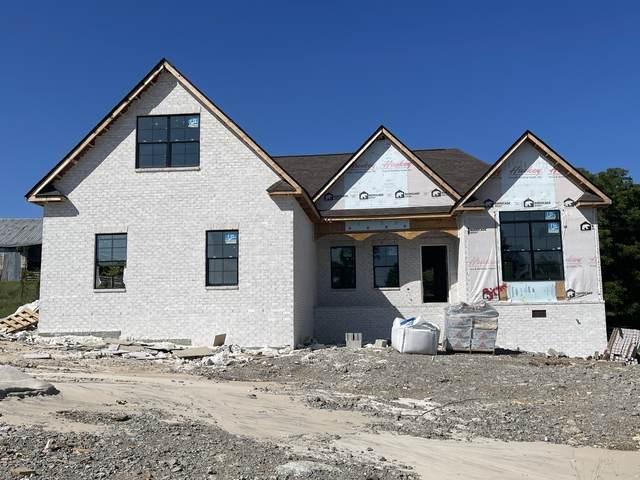 75 Rivercrest Ln, Castalian Springs, TN 37031 (MLS #RTC2207045) :: DeSelms Real Estate