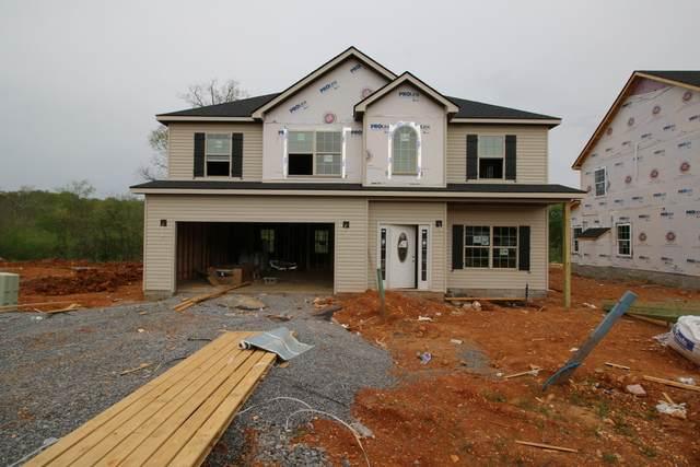141 Chalet Hills, Clarksville, TN 37040 (MLS #RTC2229210) :: Nelle Anderson & Associates