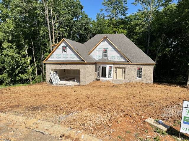 910 Douglas Ln, Clarksville, TN 37043 (MLS #RTC2248722) :: Morrell Property Collective | Compass RE