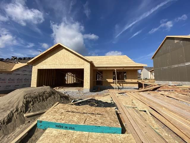 113 Irish Hills, Clarksville, TN 37042 (MLS #RTC2292554) :: The Milam Group at Fridrich & Clark Realty