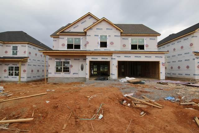 171 Mills Creek, Clarksville, TN 37042 (MLS #RTC2296989) :: Village Real Estate