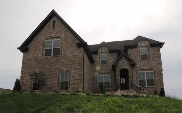 918 Harrisburg Lane, Mount Juliet, TN 37122 (MLS #1918234) :: Nashville on the Move