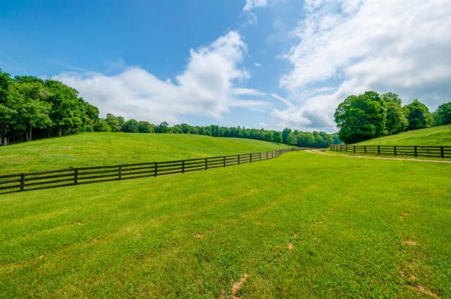 810 Wiltshire Ln, Vanleer, TN 37181 (MLS #1933923) :: CityLiving Group