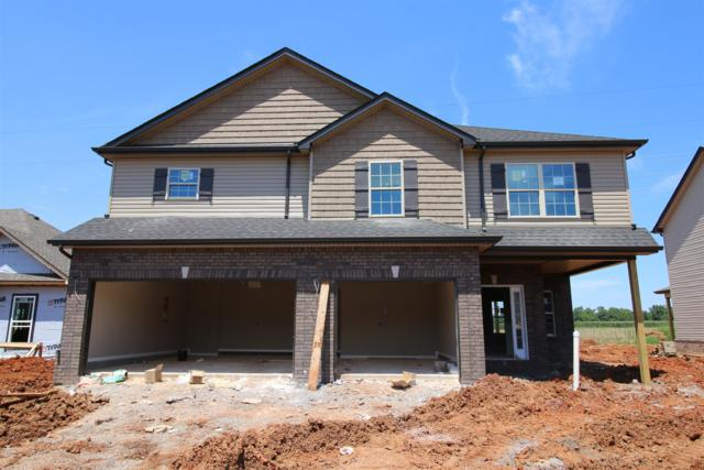 117 Summerfield, Clarksville, TN 37040 (MLS #1943921) :: EXIT Realty Bob Lamb & Associates