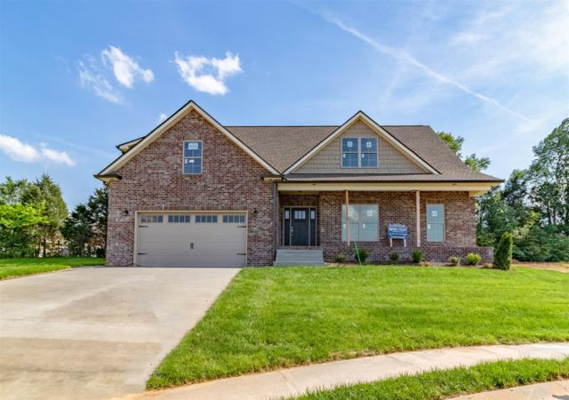67 Gallant Court, Clarksville, TN 37043 (MLS #2019711) :: The Helton Real Estate Group